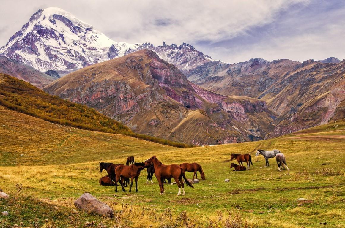 Rajd konny w Gruzji – Tuszetia, Waszlowani czy Swanetia?
