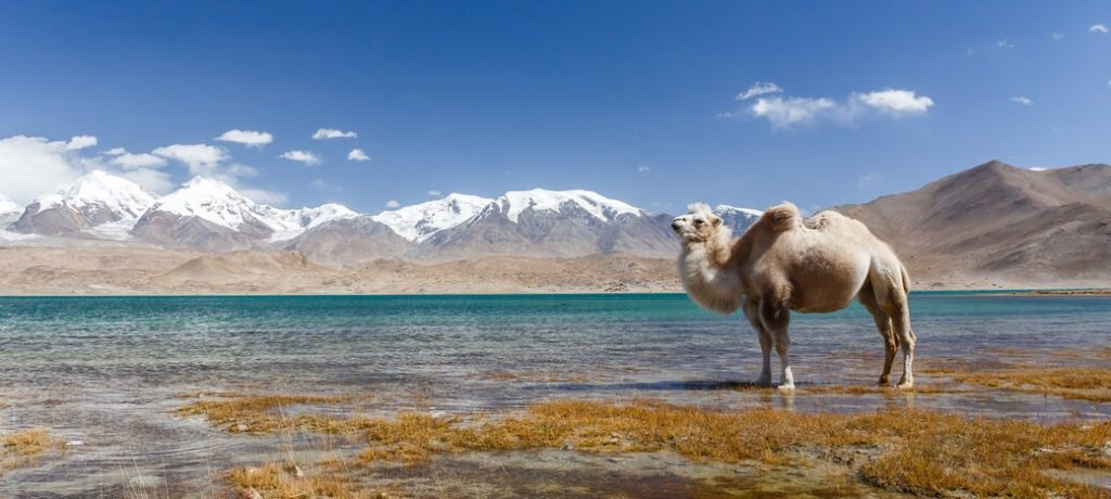 Jezioro-Kara-Kul