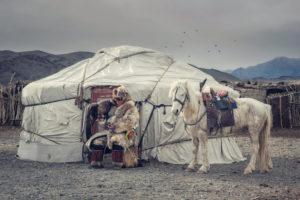 jurta koń polowanie z orłem mongolia